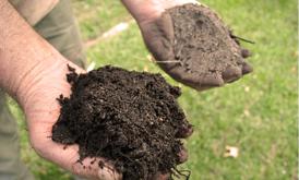 اصلاح کننده خاک