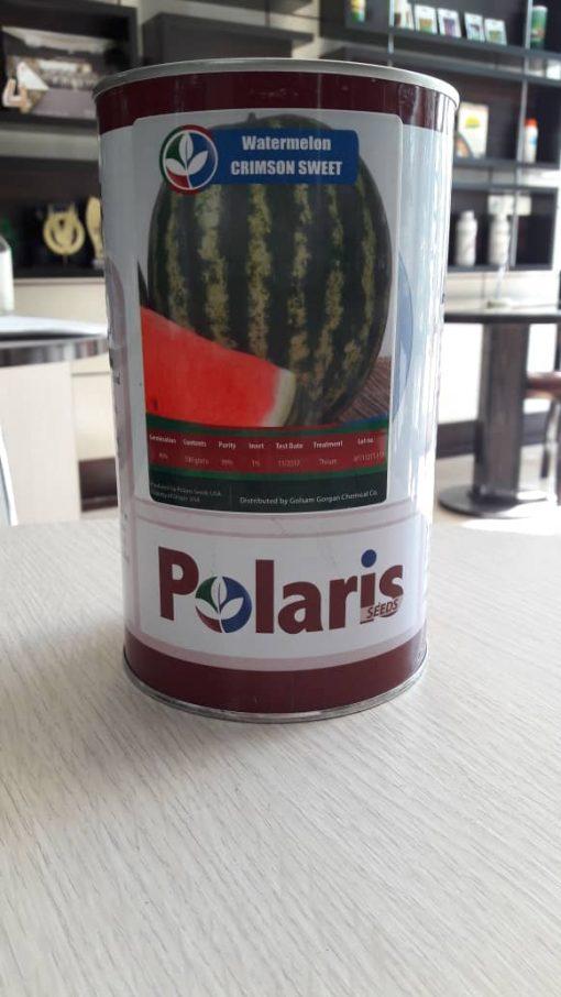 هندوانه خطی پلاریس
