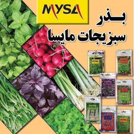 بذر سبزیجات خانگی مایسا