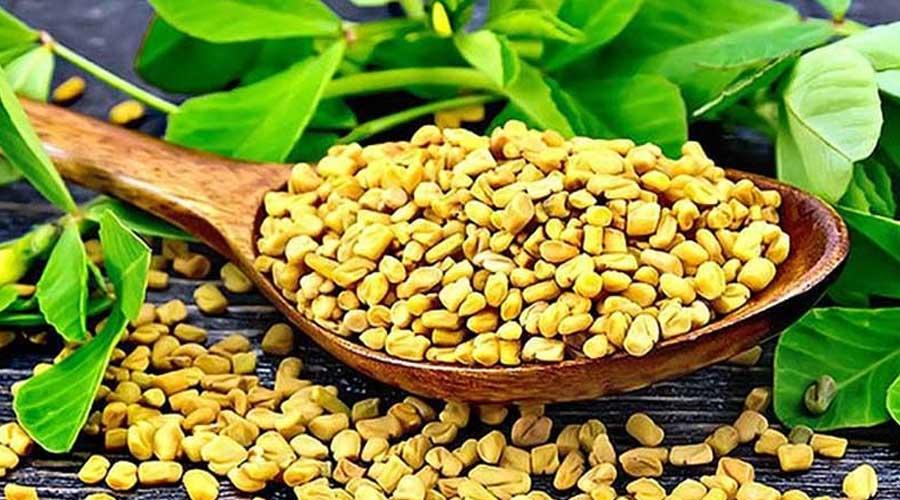 فروش بذر فروشگاه اینترنتی بهرویش فروشگاه آنلاین کشاورزی ، فروش بذر ، خرید انواع بذر مرغوب ، بذرهای معمولی ، فروش انواع بذر گیاهان دارویی . بزرگترین و متنوع ترین فروش بذر در شرکت بهرویش