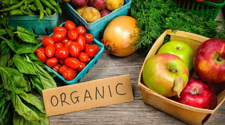 هزینه پایینتر تولید نسبت به کشت معمولی و قیمت بالاتر محصولات ارگانیک سلامت و امنیت غذایی مصرف کنندگان، حفاظت رعایت ملاحظات زیست محیطی کاهش ضایعات کشاوری به دلیل استفاده آنها به صورت کمپوست در تولید کشاورزی ارگانیک - ویژگی های کشاورزی ارگانیک - کشاورزی ارگانیک در ایران