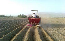 آماده سازی زمین برای کشت خیار _ آماده سازی زمین برای کشت گوجه فرنگی _ مراحل آماده سازی زمین جهت کشاورزی