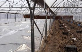 این محتوا اطلاعاتی در مورد دلایل ضدعفونی کردن خاک ، روش های شیمیایی ضدعفونی کردن خاک و همچنین روش های غیر شیمیایی ضدعفونی کردن خاک در اختیار شما عزیزان قرار میدهد.
