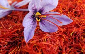 اگر به زعفران علاقه مندید می توانید در این مقاله اطلاعاتی در مورد بازار زعفران که در حال حاضر چگونه می باشد و همچنین زعفران ایران بدست آورید.