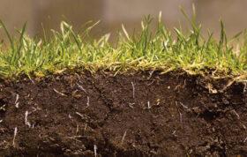 این محتوا در مورد راه های حاصلخیزتر نمودن بافت خاک کشاورزی و همچنین حاصل خیزی خاک و رعایت بهداشت خاک ویکی از موارد پر اهمیت در مورد خاک یعنی راه های تقویت نمودن خاک صحبت می کند.